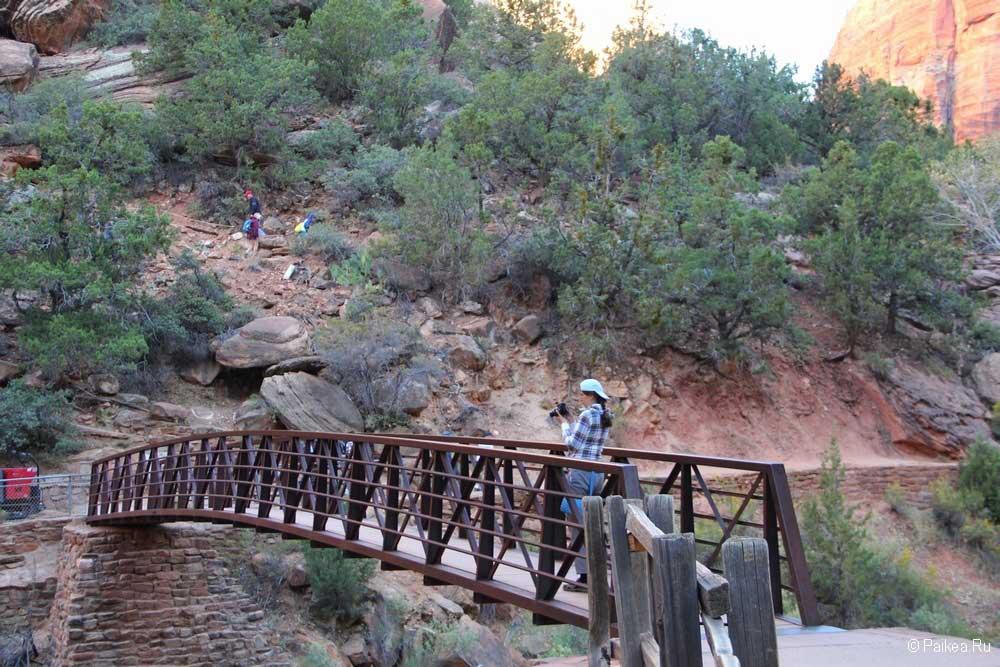 Мост через реку Вирджин вдет к началу трейла на Приют Ангелов