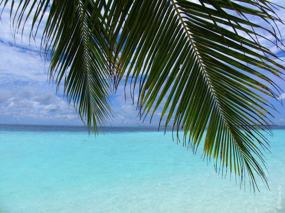медовый месяц отдых море