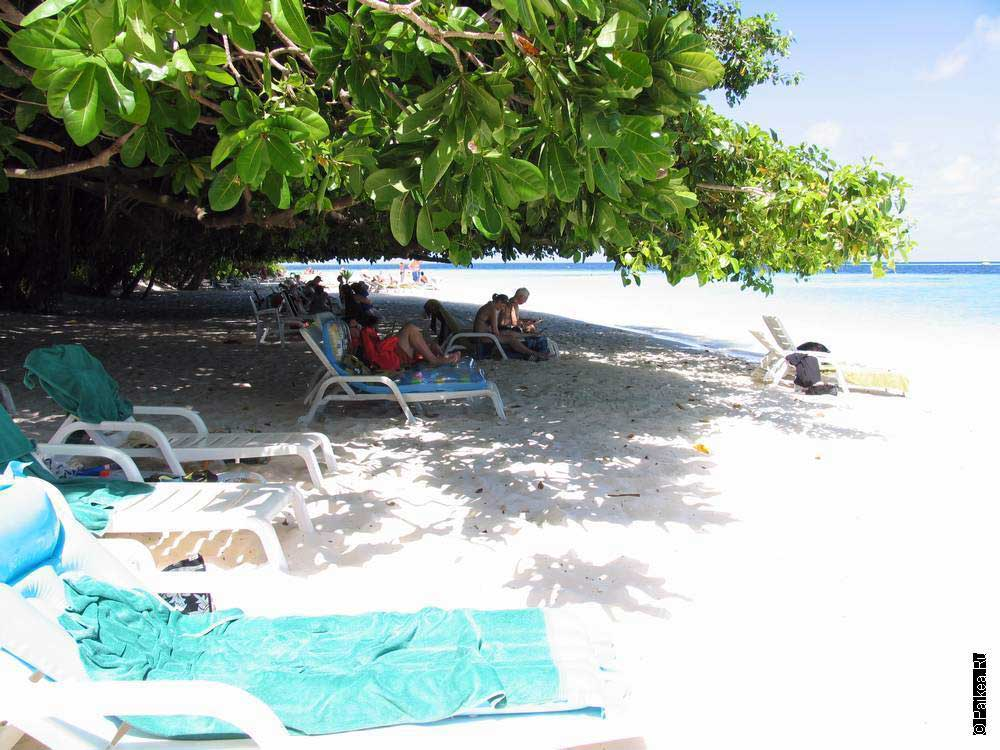 Мальдивы дешево 06