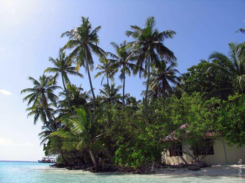 Мальдивы дешево 18