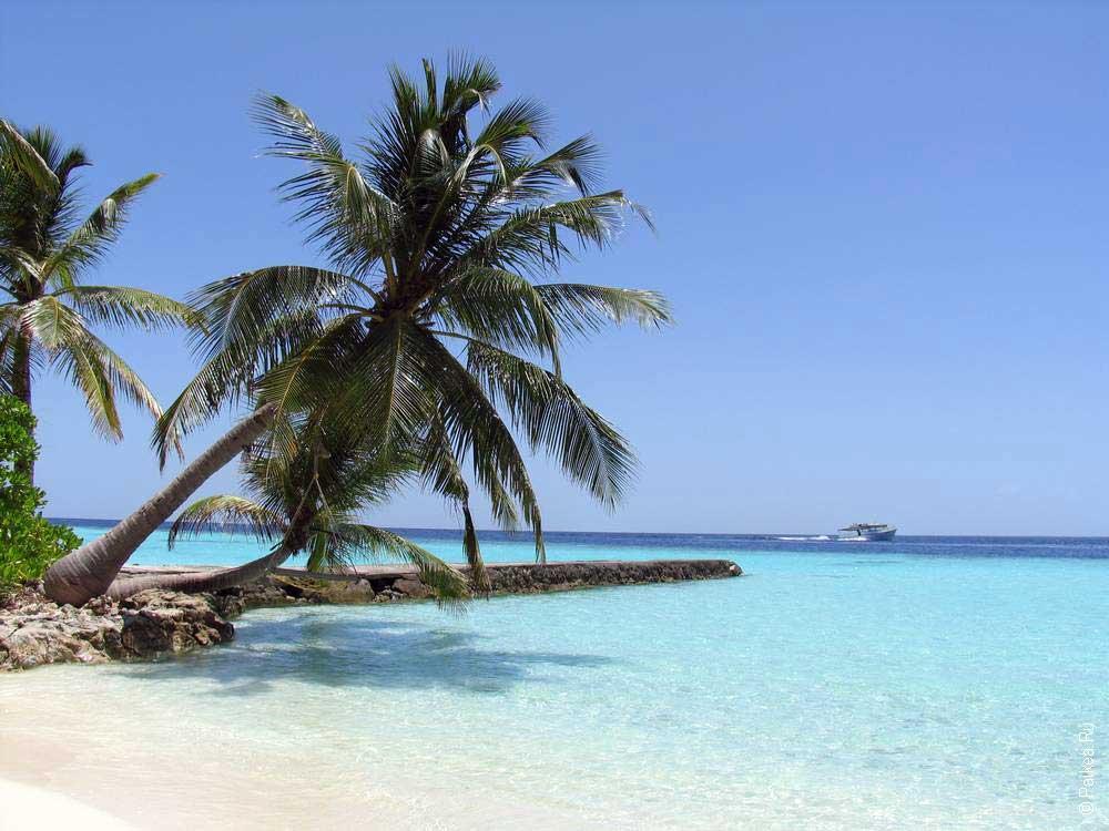 Мальдивы дешево 19