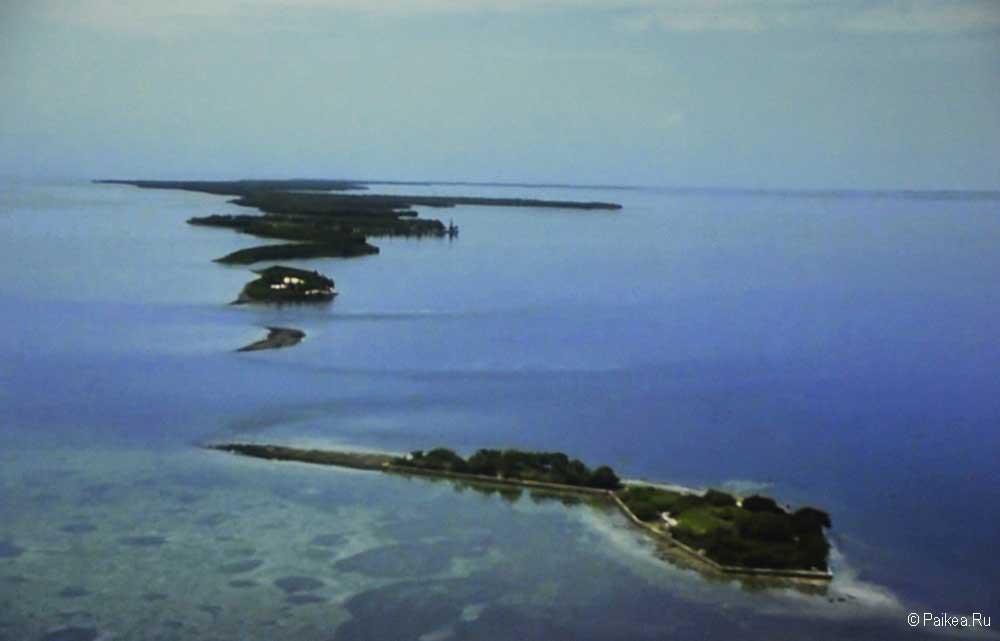 Бискейн рифы