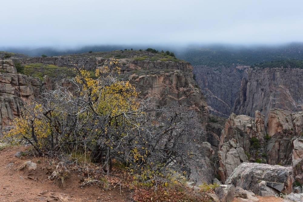 Черный каньон Ганнисона, Колорадо, США 09