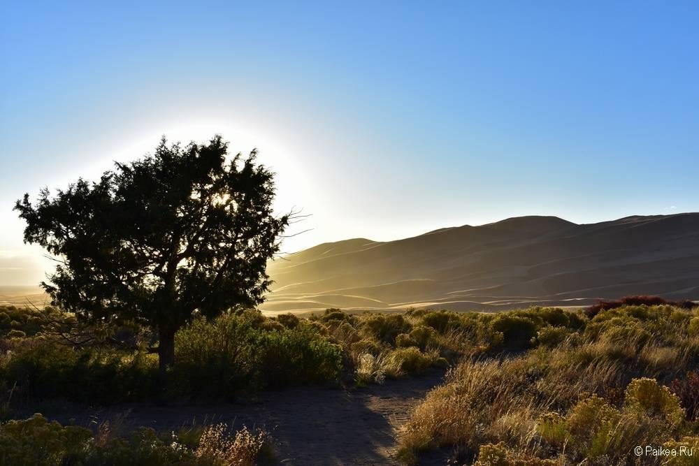 И вот мы спускаемся, чтобы успеть на закат у песчаных дюн