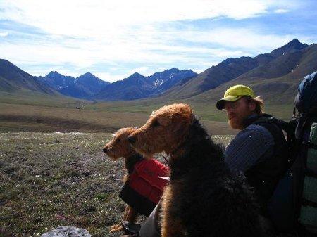 Дейв Метц и две собаки
