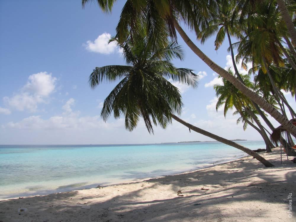 Как поехать на Мальдивы самостоятельно - что надо сделать