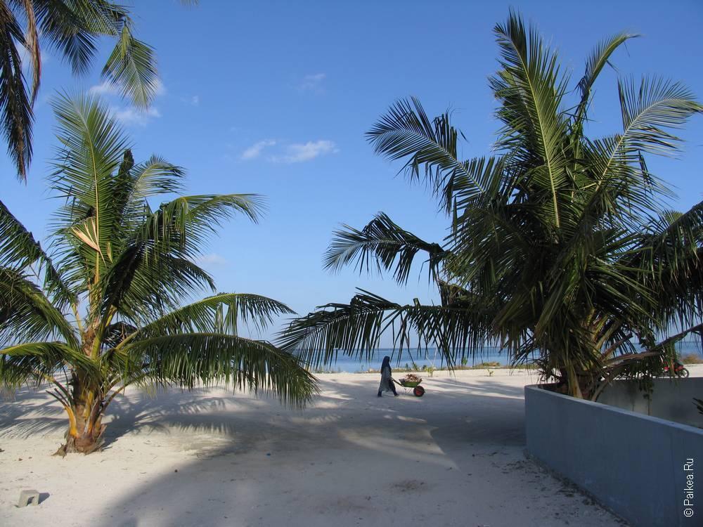 Отдых в гестхаусе на Мальдивах 21