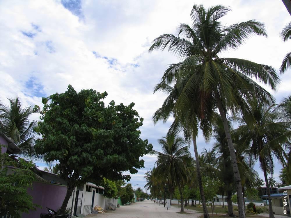 Отдых в гестхаусе на Мальдивах 54
