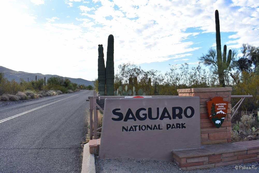 Въезд в парк Сагуаро (Saguaro National Park) 09