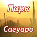 Парк Сагуаро (Saguaro National Park)