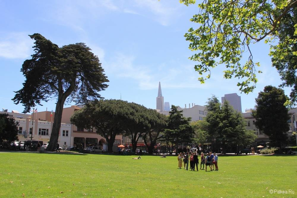 Достопримечательности Сан-Франциско парк