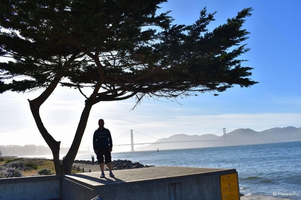 Сан-Франциско отзыв