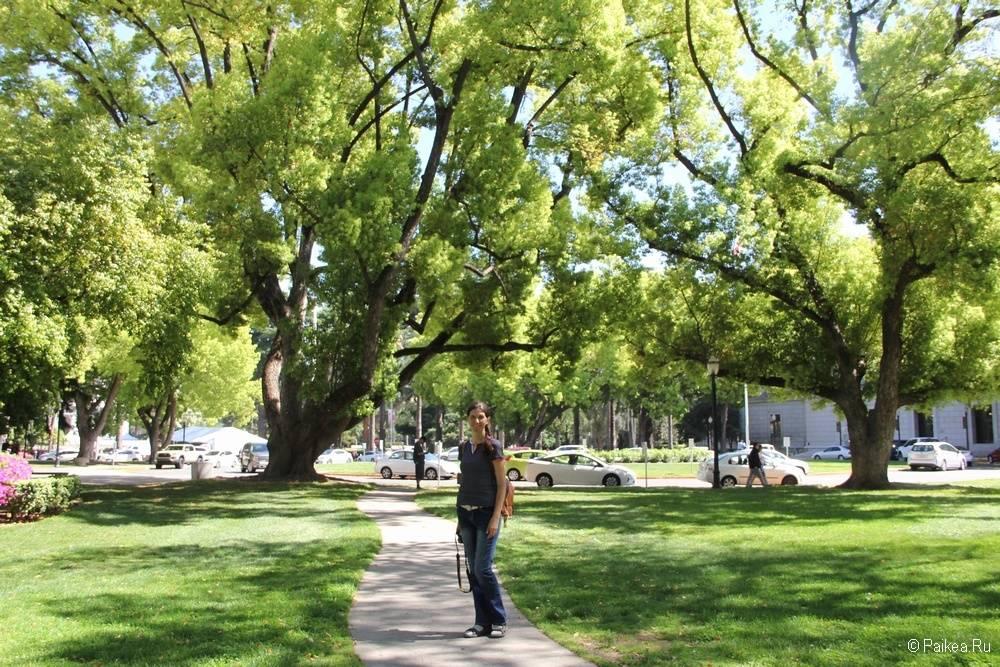 Сакраменто Калифорния 37