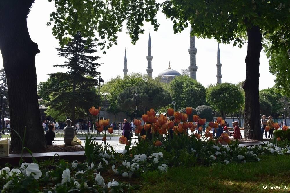 Когда лучше ехать в Стамбул