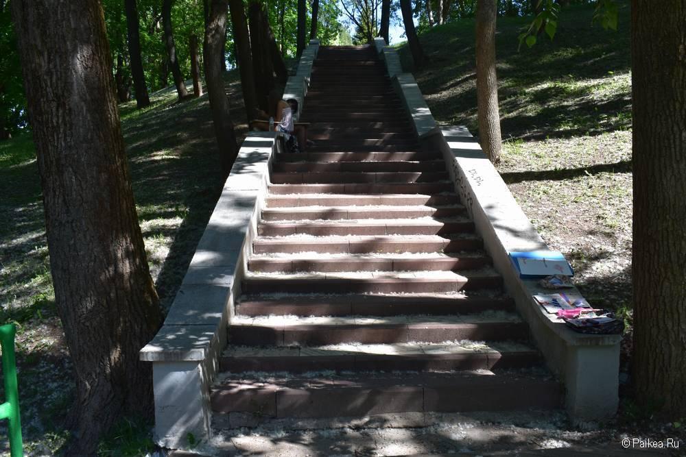 Тенистая лестница