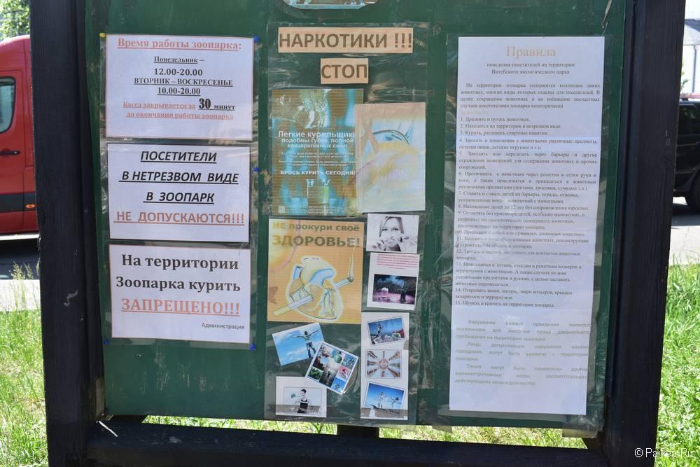 Поездка в Витебск - что посмотреть 73