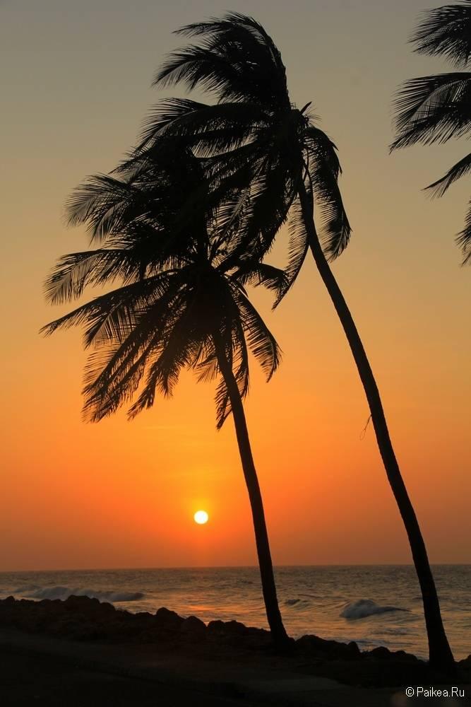 Самые красивые закаты и рассветы мира 55