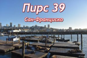 пирс 39 (pier 39)