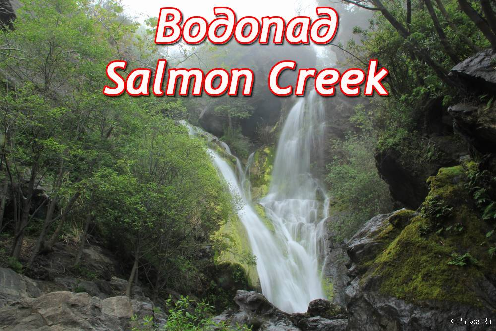 salmon creek falls это